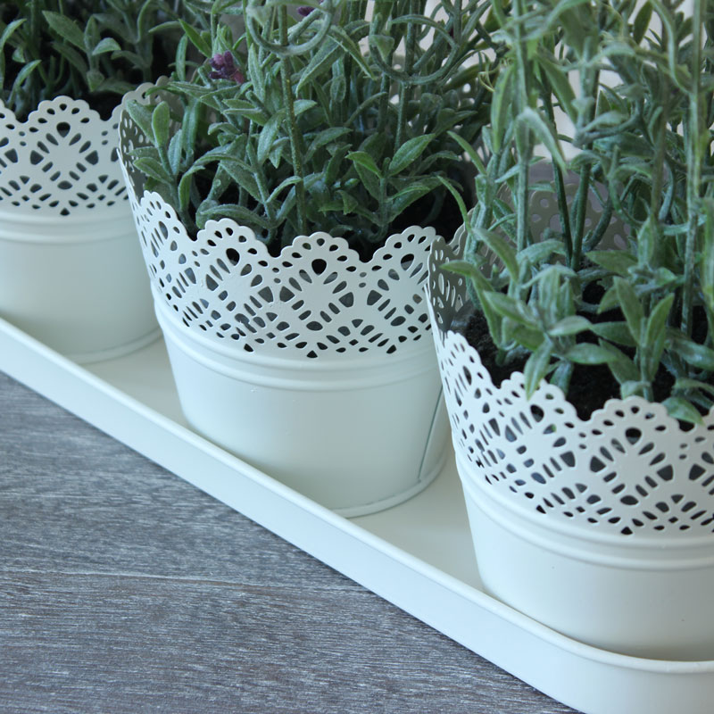 Set of Three Cream Lace Pots on a Tray