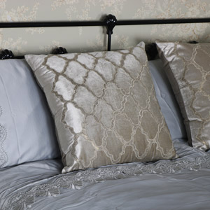 Beige Velvet Scatter Cushion