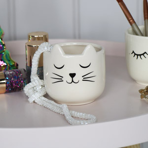 Cute Cat's Whiskers Plant Pot
