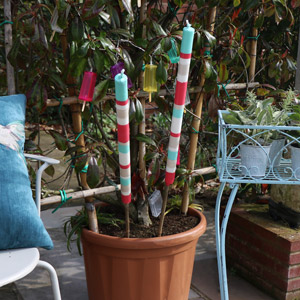 Pair of Tall Colourful Summer Garden Candles