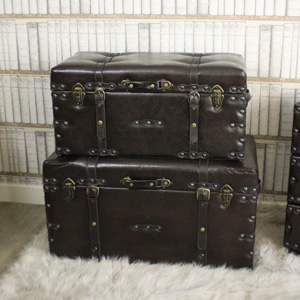 Set Of 2 Faux Leather Trunks/Storage Boxes