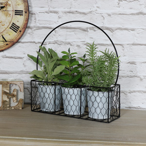 Set of Artificial Herbs in Metal Basket Carrier