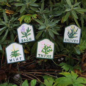 Set of Four Herb Plants Spike Signs