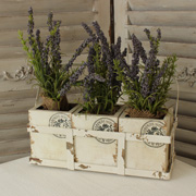 Set of Three Wooden Planters in Metal Crate