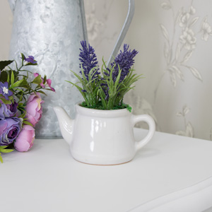Small Lavender Pot Plant in White Ceramic Teapot