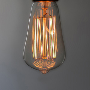 Vintage Tinted Glass Tulip 60W Filament Bulb