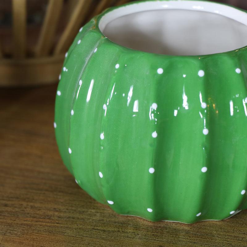 Green Cactus Plant Pot