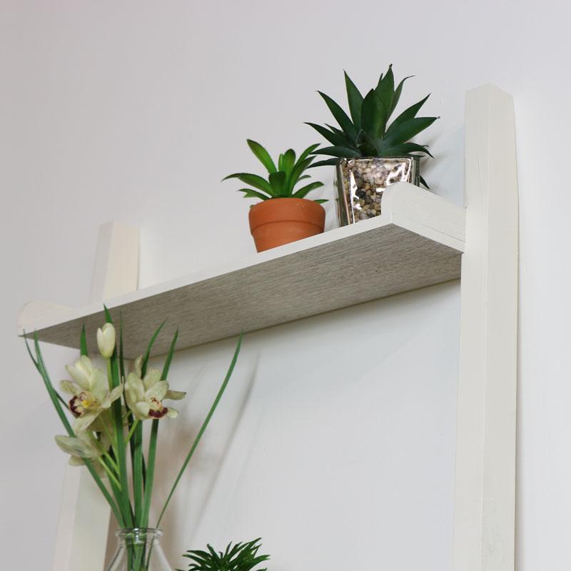Leaning Ladder Shelves Bookcase