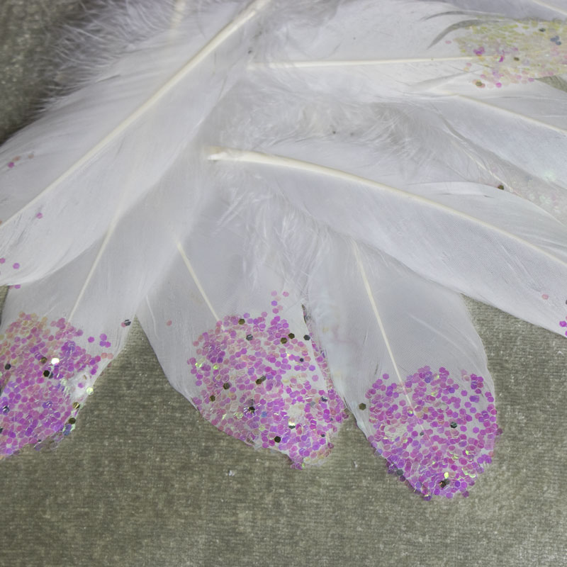 Cream Feathers with Pink Tips - Pack of 12