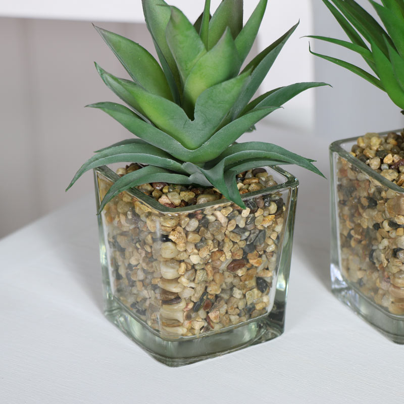Set of 3 Artificial Plants in Glass Pots