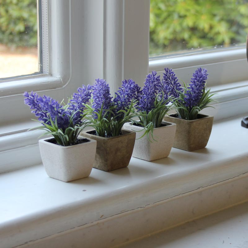 Set of 4 Lavender Pots