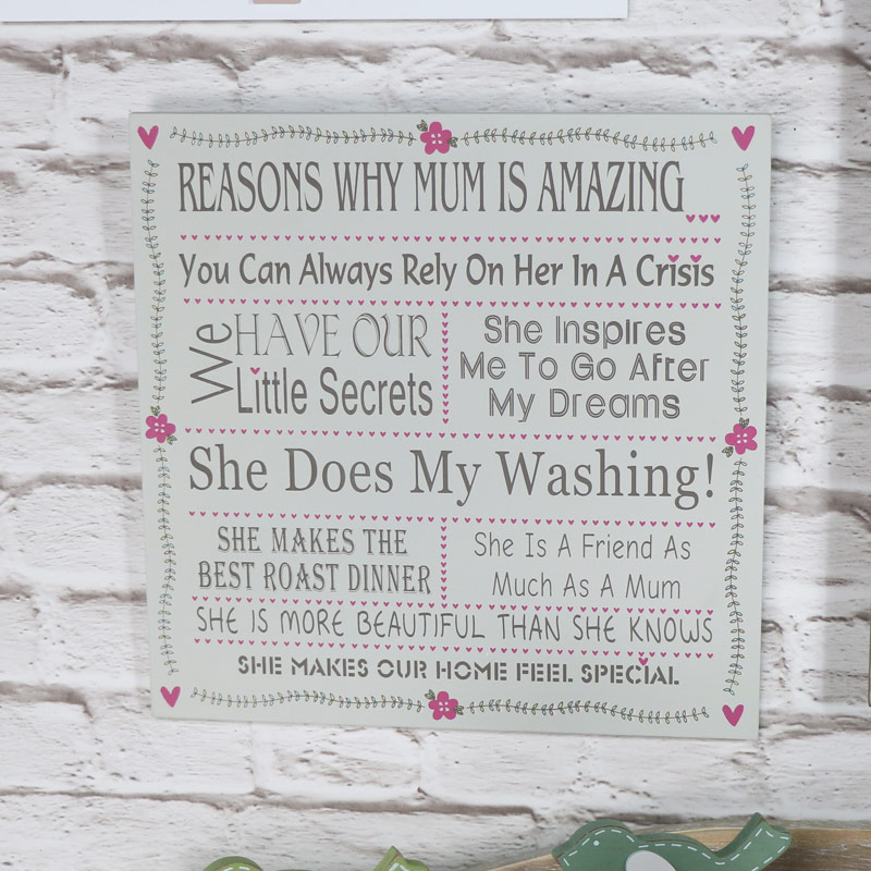 Wall Plaque 'Reasons Why Mum is amazing'