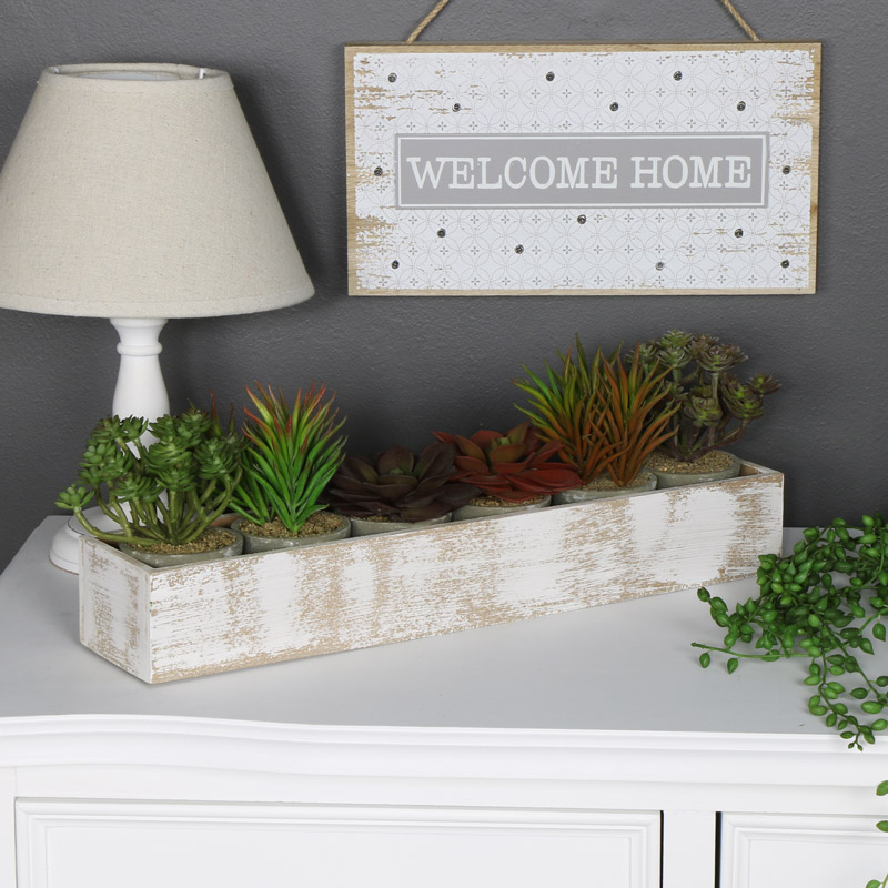 Wooden Window Tray with 6 Succulents