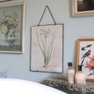Botanical Framed Floral Print