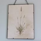 Framed Floral Vintage Wall Picture