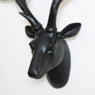 Large Black Stag Head with Gold Birds