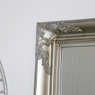 Large Champagne Ornate Wall/Floor Mirror 158cm x 78cm
