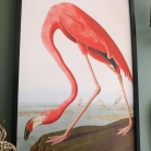 Large Flamingo Wall Picture