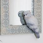 Ornate Cream Parrot Wall Mirror