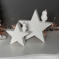 Pair of Christmas Owls on Star Ornament