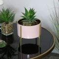 Round Pink Planter on Stand