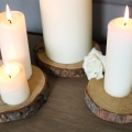 Set of 3 Pine Wood Slice Coasters/Candle Stands