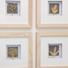 Set of 4 Framed Dried Flower Pictures