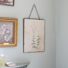 Vintage Botanical Wall Picture