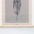 Wall Hanging Feather Canvas