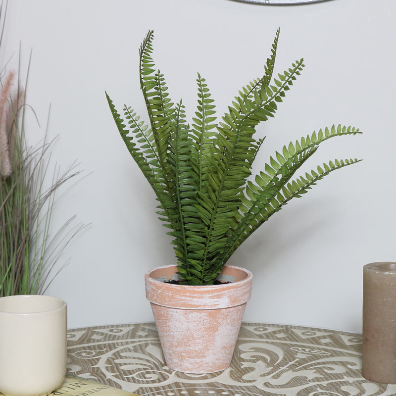 Faux Fern Potted Plant in Terracotta Pot