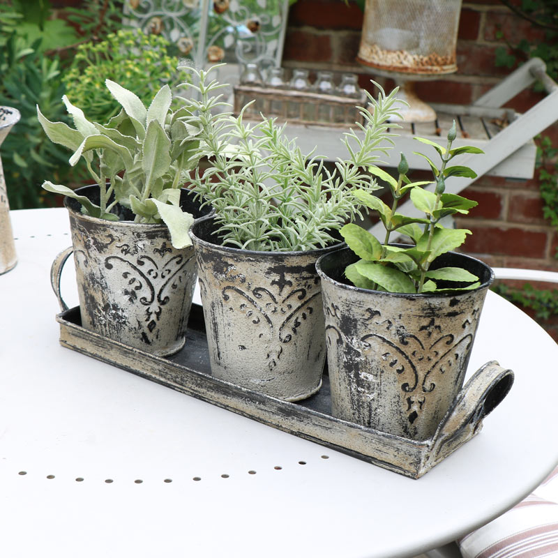Grey Plant Pots in Tray