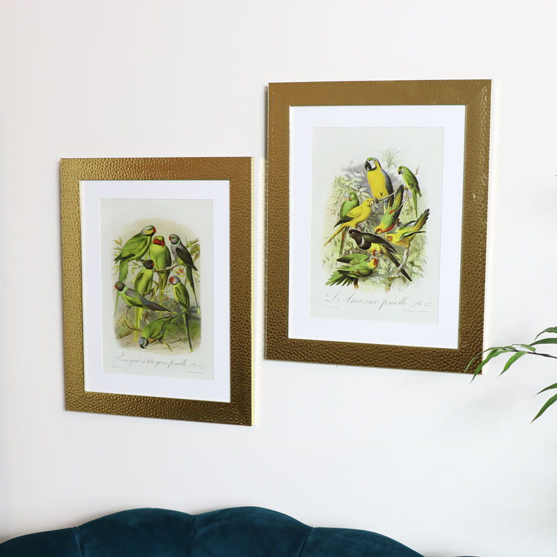 Wall Mounted Gold Framed Tropical Bird Prints