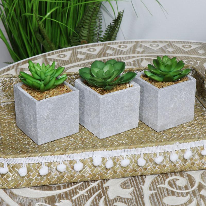 Artificial Succulent Plants set