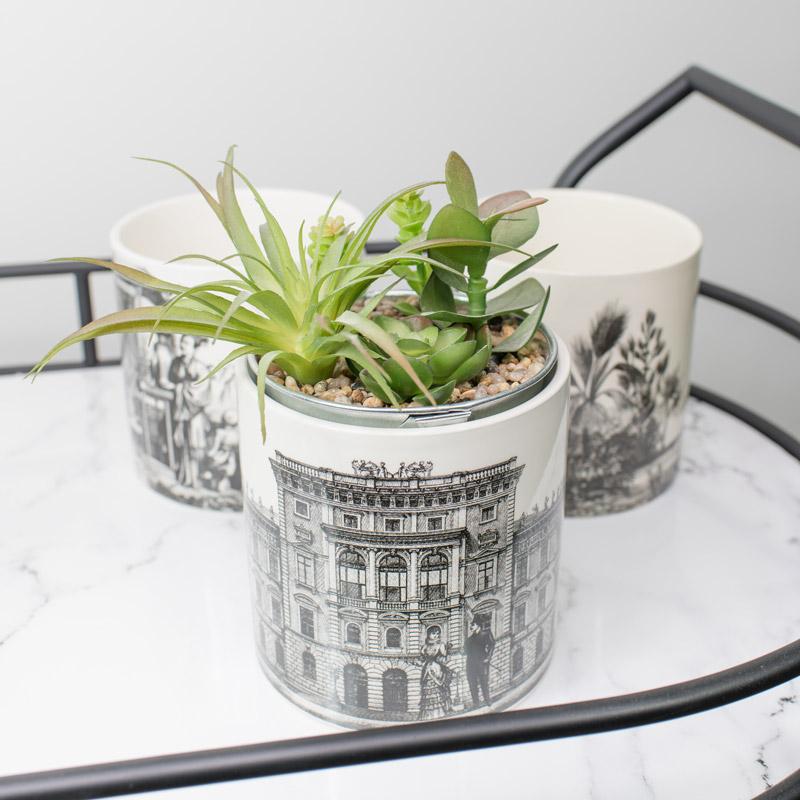 Set of 3 Monochrome Ceramic Planters