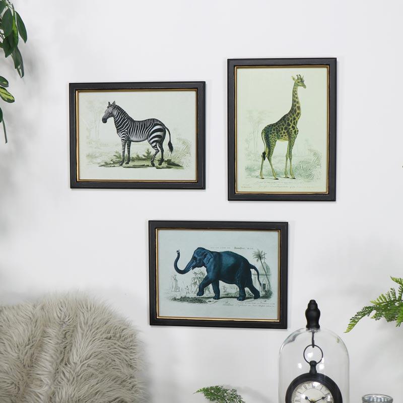 Set of 3 Safari Animal Wall Prints