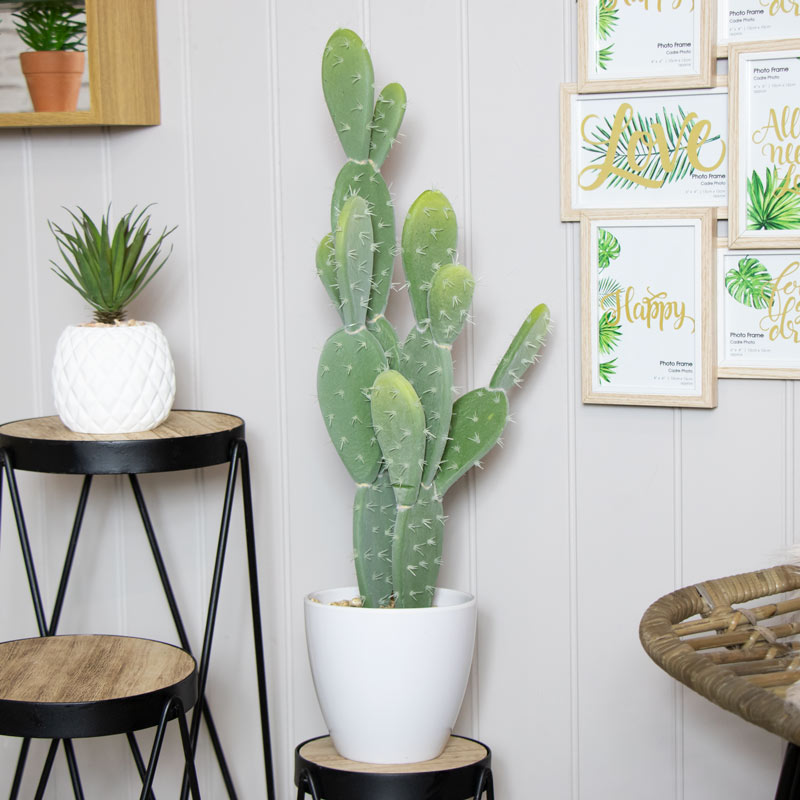 Tall Artificial Flat Leaf Cactus Plant