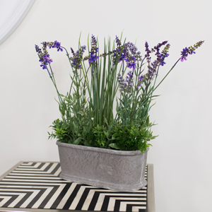 Faux Lavender in Grey Pot