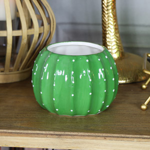 Green Cactus Plant Pot