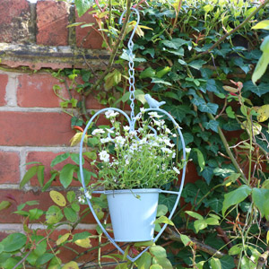 Hanging outdoor Plant Pot - Blue Heart & Bird Design