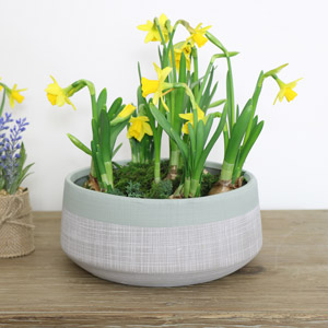 Large Round Grey & Green Planter Pot