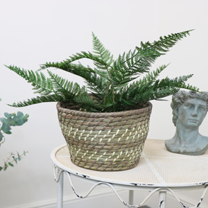 Large Woven Basket Planter