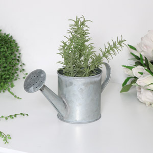 Ornamental Grey Metal Watering Can Planter