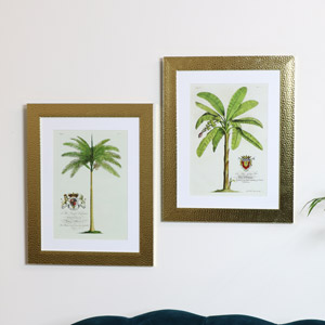 Pair of Wall Mounted Gold Framed Palm Tree Prints