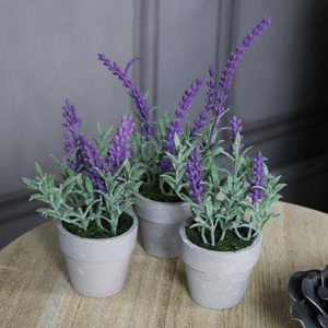 Set of 3 Artificial Lavender Plants in Stone Pots