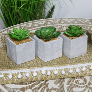Artificial Succulent Plants set