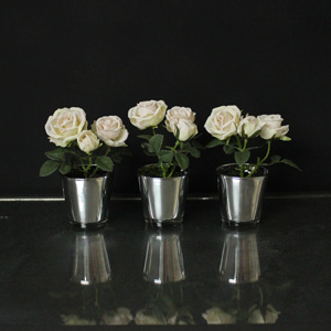 Set of 3 Roses in Glass Pots