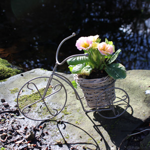 Grey Tricycle Planter