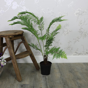 Tall Artificial Fern Bush in Black Plant Pot